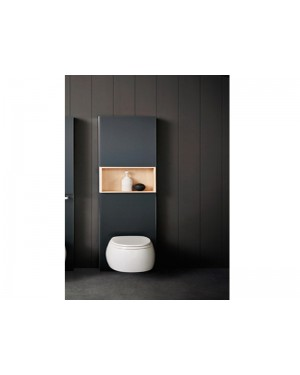 Agape Pear 2 ACER0897WZ wall hung wc with toilet seat